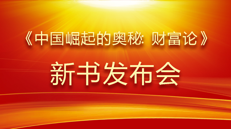 中国崛起的奥秘: 财富论